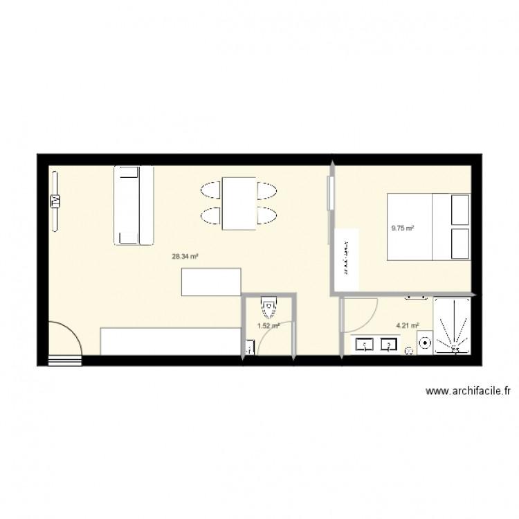 plan appartement 1 pièce 45m2